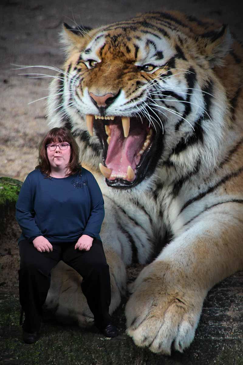 48-tigres-02